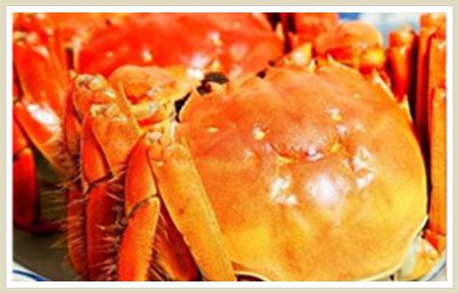 在海鲜池前,宾客可现场挑选螃蟹,选好之后直接送进厨房,酒店大厨精心